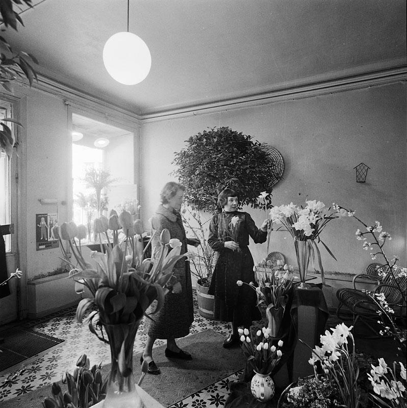 Tufvesons blomsterhandel Götgatan 16 Stockholmskällan